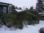 Eisregen Jänner 2010